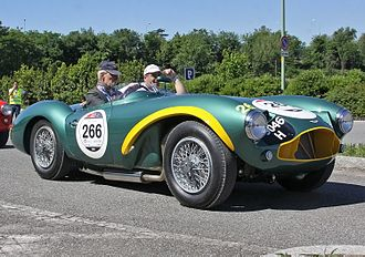 1955 World Sportscar Championship - Aston Martin placed fifth with the DB3S