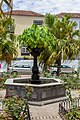 At Garachico, Tenerife 2019 026.jpg