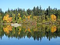 At Lost Lagoon - Stanley Park - Vancouver - BC - Canada - 02 (37943485202) (2).jpg