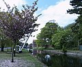 At the Head of the Driffield Canal - geograph.org.uk - 424128.jpg