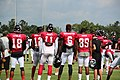 Atl Falcons training camp July 2016 IMG 7701.jpg