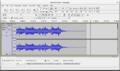 Audacity 2.1 editing.png