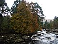 Autumn, Falls of Dochart - geograph.org.uk - 272877.jpg