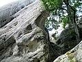 Bílé kameny u Jítravy (6).jpg