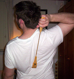 http://upload.wikimedia.org/wikipedia/commons/thumb/2/21/Back_scratcher.jpg/256px-Back_scratcher.jpg