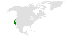 Baeolophus inornatus distribution map.png