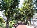 Baikoen Ryokudo 02.jpg