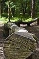 Balance Stämme - panoramio.jpg