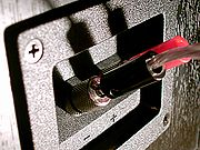 Five-way binding posts on a loudspeaker connected using banana plugs.