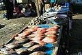 Bandar Abbas Fish Market 2020-01-22 09.jpg