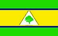 Bandeira de Floresta PI.jpg