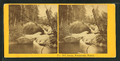 Basin, Franconia Notch, from Robert N. Dennis collection of stereoscopic views 2.png