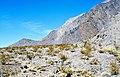 Bat Mountain (Funeral Mountains, Inyo County, California, USA) 2.jpg