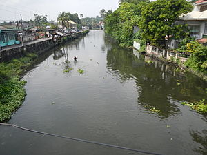 Pansipit River - Pansipit River under the Lemery, Batangas bridge