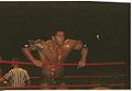 Batista in ropes.jpg
