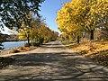 Bayfront Autumn.jpg
