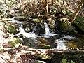Bearden Creek - panoramio (3).jpg