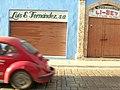Beetles of Campeche Luis E Fernandez S A.jpg