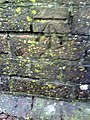 Benchmark on parapet of railway bridge on Poundbury Road - geograph.org.uk - 2225470.jpg
