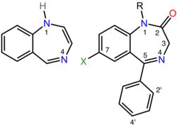 On the left is the chemical structure of the parent benzodiazepine ring system which consists of a seven membered ring containing two nitrogen atoms fused to a six membered ring.  The two nitrogen atoms are labeled one and four.  On the right is the chemical structure of a pharmacologically active benzodiazepine in which alkyl, phenyl, and halogen groups are attached to the one, five, and seven positions respectively and the carbon atom at position two is double bonded to an exocyclic oxygen atom. The ortho and para positions of the phenyl substituent are labeled two-prime and 4-prime respectively.