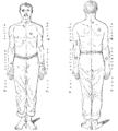 Bertillon - Identification anthropométrique (1893) 349 n&b.png