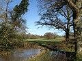 Bevern Stream - geograph.org.uk - 1609126.jpg