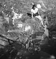 Bicycle, woman, summer, double exposure Fortepan 31004.jpg