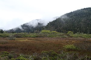 Big Basin Redwoods State Park - The Rancho Del Oso section of the Park, including Waddell Marsh in the Theodore J. Hoover Natural Preserve, from the Skyline-to-the-Sea Trail