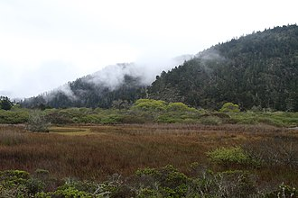 Rancho Del Oso Nature and History Center - The Rancho Del Oso section of the Big Basin Redwoods State Park, including Waddell Marsh, from the Skyline-to-the-Sea Trail