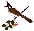 Bird with something in beak.png