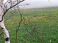 Blatouchy - panoramio.jpg