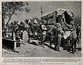 Boer War; sick and wounded soldiers arriving at Modder River Wellcome V0015537.jpg