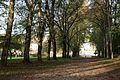 Boissises-le-Roi - 2014-10-31 - IMG 7201.jpg