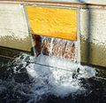 Bonneville Fish Hatchery fish chute 5 - Oregon.JPG