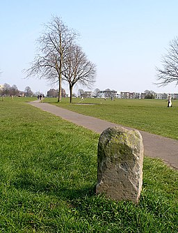 Boundary stone and footpath crossing The Downs - geograph.org.uk - 384982