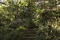 Bowral NSW 2576, Australia - panoramio (111).jpg