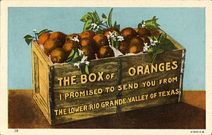 Rio Grande Valley - Box of Oranges, from the Lower Rio Grande Valley, Texas (postcard, c. 1912-1924)