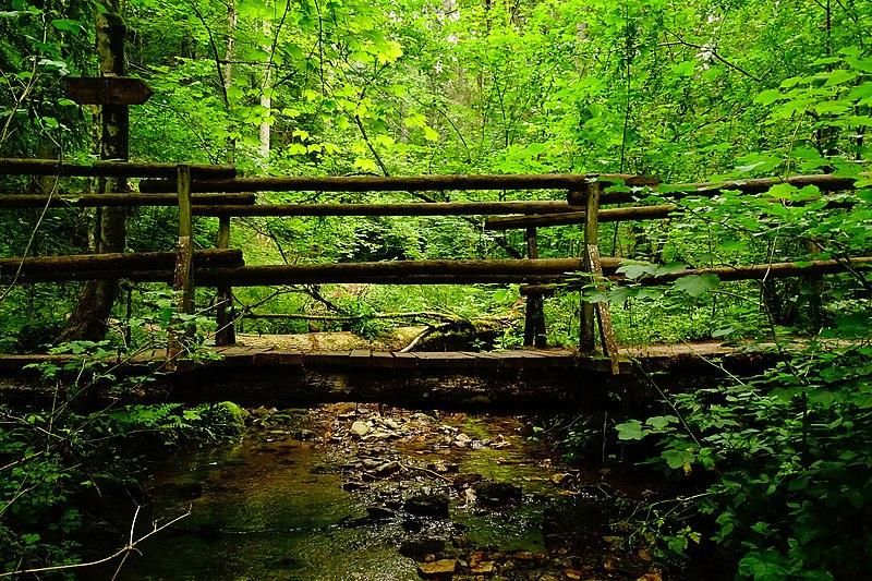 File:Brücke in der Gauchachschlucht.jpg