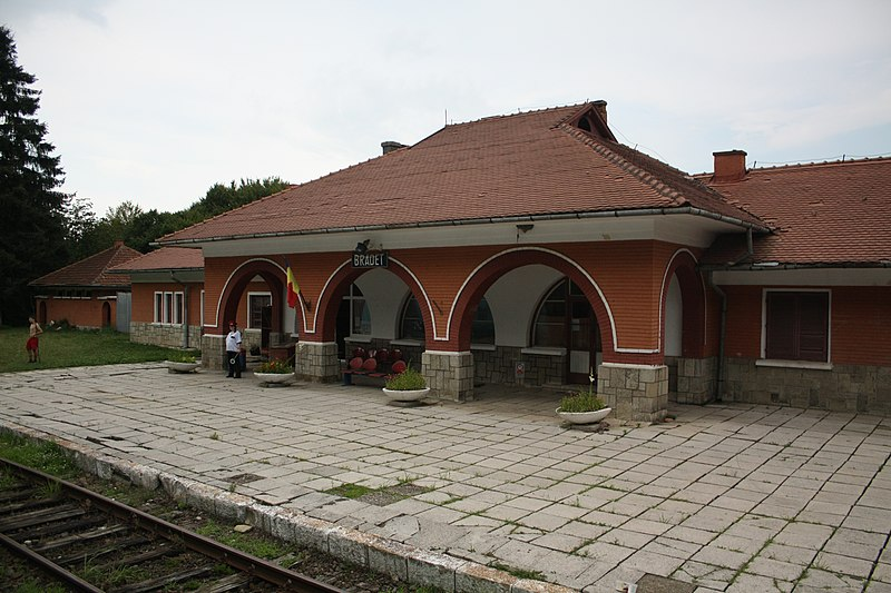 Fișier:Bradet, Romania - train station.jpg
