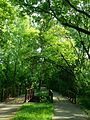 Bredesen Park, Edina, MN- 2014-04-17 22-42.jpg