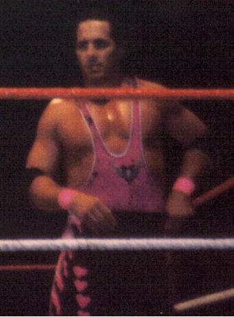 Hart in 1995 Bret Hart in 1995.jpg