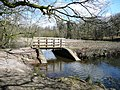 Bridge at Cannop Pond - geograph.org.uk - 743636.jpg