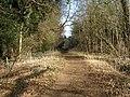 Bridleway, Harlestone - geograph.org.uk - 130382.jpg