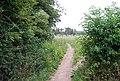 Bridleway heading north - geograph.org.uk - 1362687.jpg