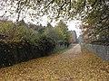 Bridleway near Bradwell Grove - geograph.org.uk - 1591647.jpg