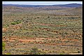 Broken Hill Plains with greenery-1 (5149883349).jpg
