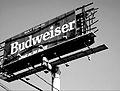 Budweiser after IKE.jpg