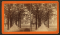 Bull Street, from Madison Square, Savannah, Ga, from Robert N. Dennis collection of stereoscopic views 2.png