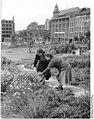 Bundesarchiv Bild 183-39326-0002, Berlin, Volkspark Weinbergsweg.jpg