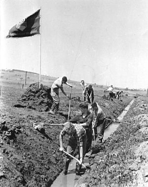 Free German Youth - FDJ members digging ditches in May 1959